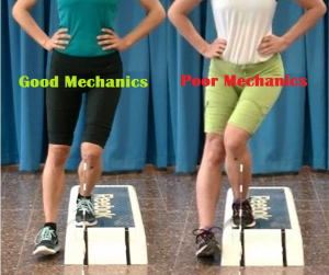 Knee Mechanics